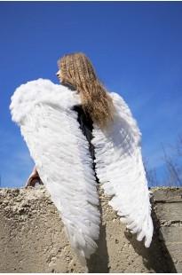 Крылья Ангела 85 х 115